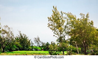 Golf court in Mauritius Ile aux Cerfs - passing by the golf...