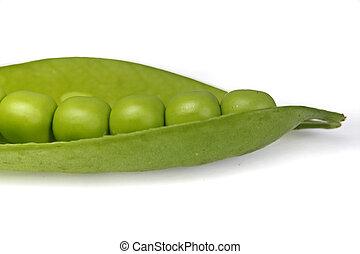 Sugar Snap Peas - Snap peas, Pisum sativum var macrocarpon...