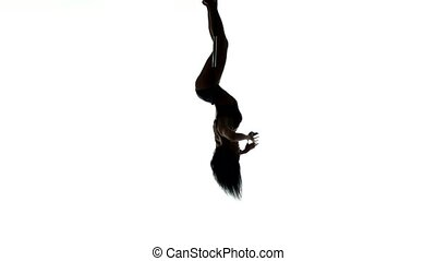 Aerial acrobat woman on circus stage. Silhouette on a white...