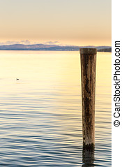 Wooden post in lake - Closeup of wooden post in lake at...
