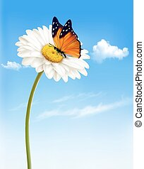 Nature spring daisy flower with butterfly. Vector illustration