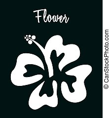 hawaii flower design, vector illustration eps10 graphic