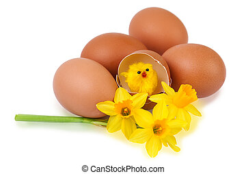 Easter egg decoration with yellow chick - Easter egg...