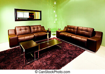 Domestic room - Modern living room with two brown leather...