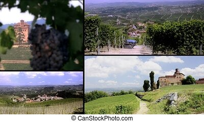 Langhe vineyards and buildings coll - Vineyards in langhe,...