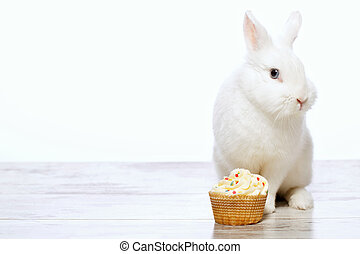 Little bunny sitting by the cupcake - Adorable birthday gift...