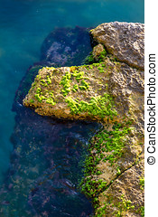 Partially submerged rock - Details of a rock partially...