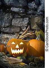 Halloween pumpkins still life close up outside