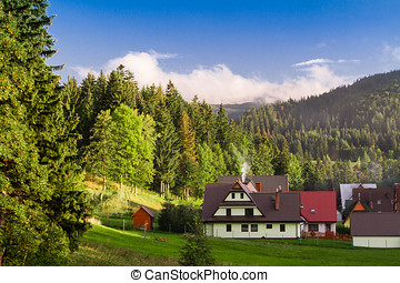 Zakopane town and landscape - Colorful houses on suburbs of...