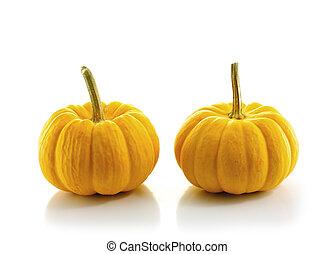 pumpkin on white background