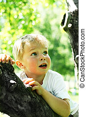 Little boy on tree - Little kid on tree