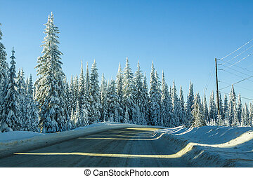 Roadway in Icy Winter Terrain