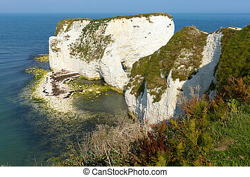 Old Harry Rocks chalk formations uk - Old Harry Rocks chalk...