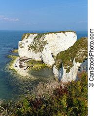 Jurassic Coast Dorset England UK chalk stacks Old Harry...