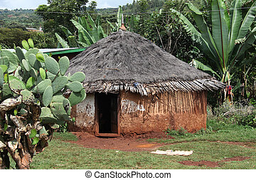 House - Traditional Ethiopian house. Omo Rift Valley....