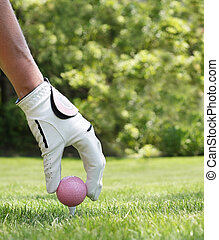 Ladies golf - Ladies hand placing a pink golf ball on a tee...