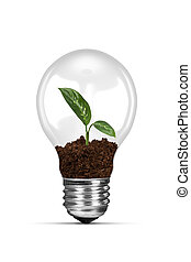 Light Bulb and Growing Green Plant - Energy saving concept,...