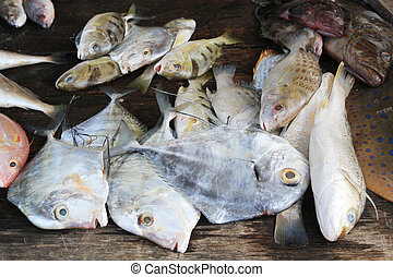 Fresh fish for food in rural market
