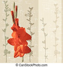 gladiolus - decorative background with red gladiolus vector...