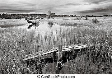Haymaking on a Viliya - B/w colored landscape, meadow,...