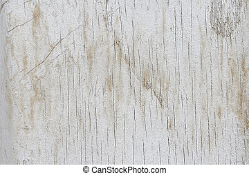 Grung white wood - Grunge white wood, can be used as...