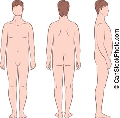 Male silhouette - Vector illustration of mens figure Body...