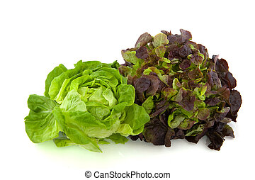 Lettuce assortment crisphead and red oak leaves