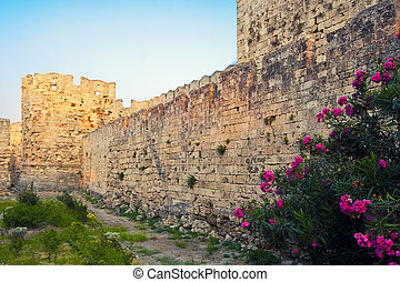 Knights Grand Master Palace, Rhodes, Greece - Wall of...