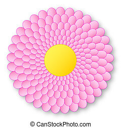 Lovely pink flowerer with yellow center and with shadow on white background