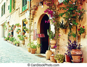 Street in Valldemossa village in Mallorca, Spain