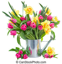bunch of tulips and daffodils in vase - bunch of fresh pink...