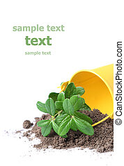 Gardering conceptual image. Isolated over white. Put your text.