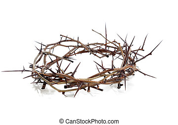 Crown of thorns on a white background