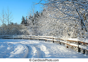 Snowy landscape - Beautiful winter snow landscape with a...