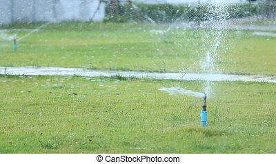 water sprinkler in garden field, green grass background