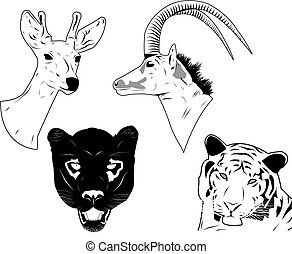 Wild animals heads - Hand drawn of wild animals head. Easily...
