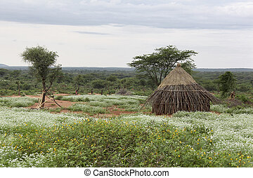 Houses of people from a tribe Hamer in Omo Rift Valley,...