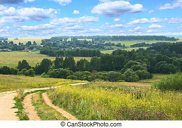 hilly summer landscape with country road
