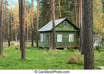 wooden cottage in forest