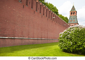 red wall Kremlin - fresh green grass and part of Kremlin in...