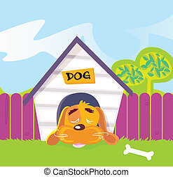 Dog sleeping in dog house - Cute dog sleep in dog house....