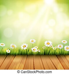 Spring Background With Daisies - Spring background with...
