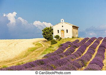 chapel with lavender and grain fields, Plateau de Valensole, Pro
