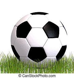 soccer ball laying in the grass