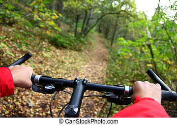 Biking Mountainbike in the autumn forest