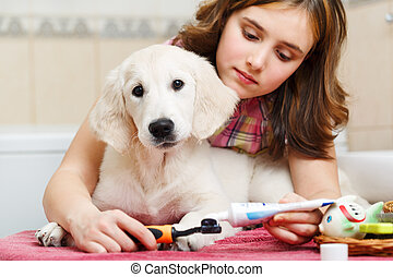 Girl cleaning teeth of her dog at home - Girl owner is...