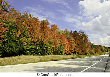On the road again - A road way full of fall colors and blue...
