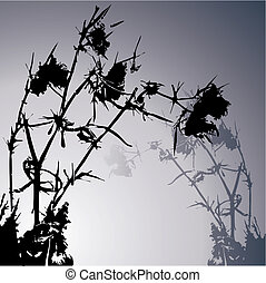 thistle - black thistle - vector illustration background