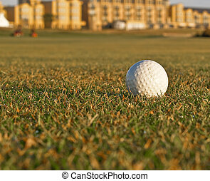 Golf ball lying on fairway. - Golf ball lying on fairway...