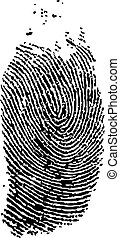 finger print - detailed finger print - vector illustration